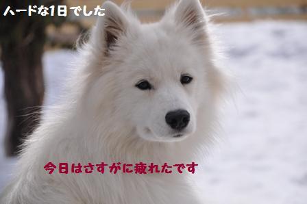 f0212597_173833100.jpg