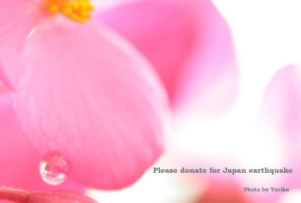 * Please Donate For Japan Earthquake * _c0083904_164052.jpg
