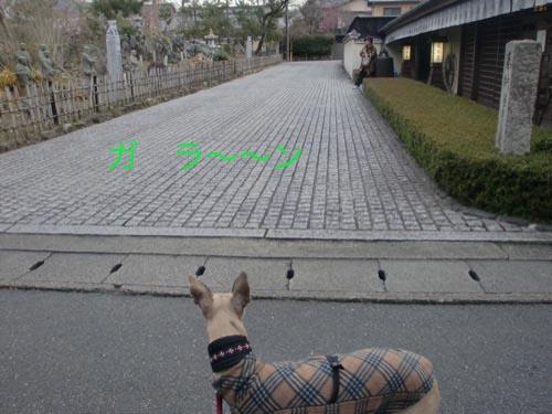 閑散_a0197730_23442228.jpg