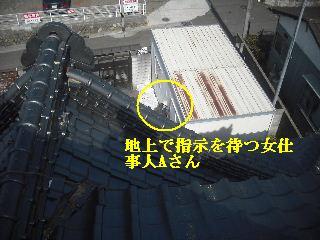 瓦屋根・・緊急工事_f0031037_2001264.jpg