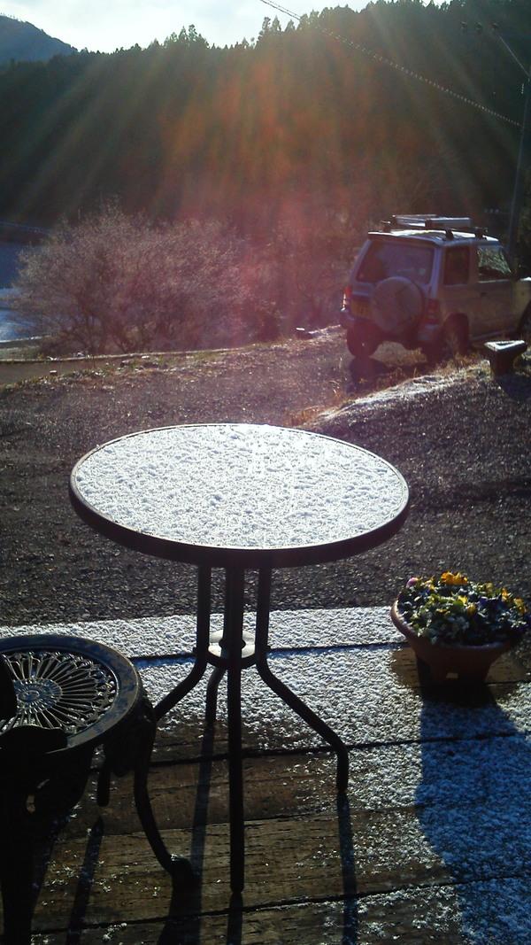 梅の花に降り注ぐ陽光_a0174458_22534328.jpg