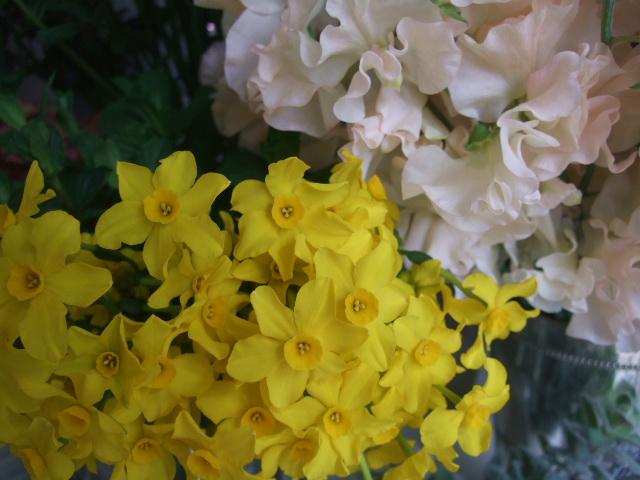 オークリーフ(ジョンクは春の香り)_f0049672_1110227.jpg