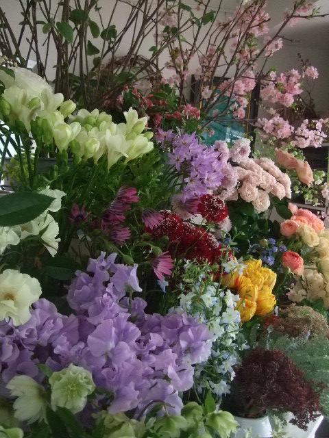 オークリーフ(ジョンクは春の香り)_f0049672_1173374.jpg