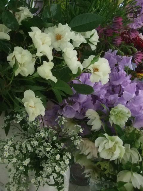 オークリーフ(ジョンクは春の香り)_f0049672_1174928.jpg