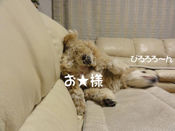 f0218182_1519839.jpg