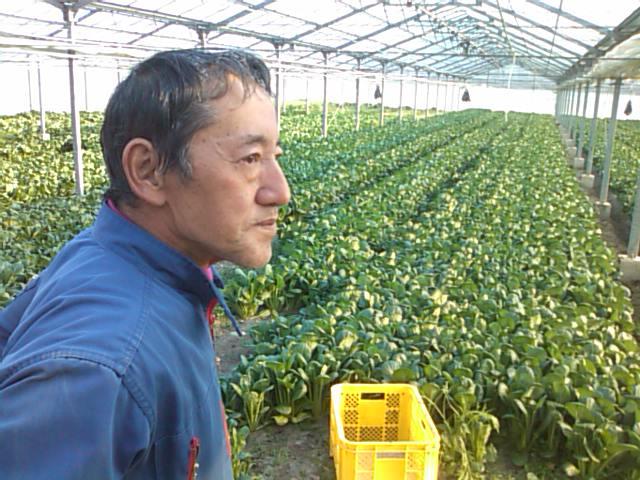 支援物資、野菜の摂取制限_e0068696_22474757.jpg