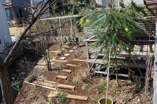 3月の庭…_c0124100_003377.jpg