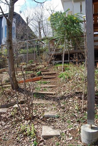3月の庭…_c0124100_025274.jpg