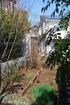 3月の庭…_c0124100_031440.jpg