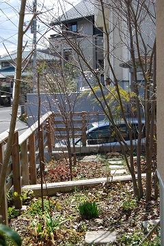 3月の庭…_c0124100_032980.jpg