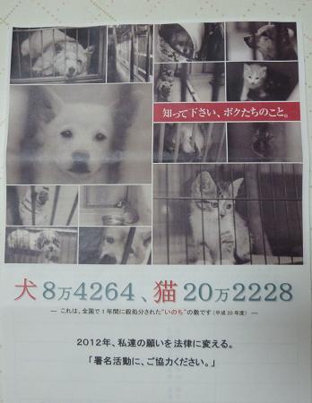 b0138430_20122697.jpg