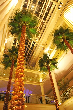 Santamonica2007 #1 ホテル_f0169341_1613334.jpg