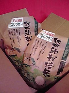 感謝!がんばります!!/デザイナー・HAMADA_b0070066_19524533.jpg