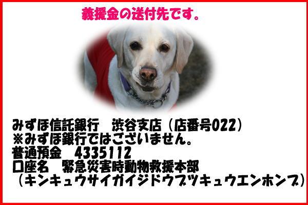 b0136683_21144450.jpg