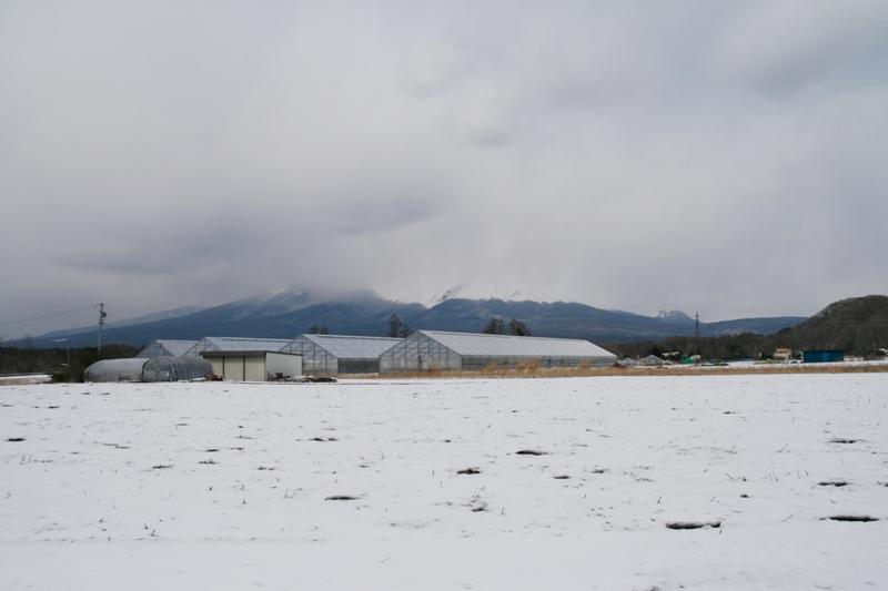 浅間山が見えなかった日_f0091207_181045.jpg