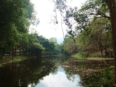 チェンマイの観光地_e0182138_22141750.jpg