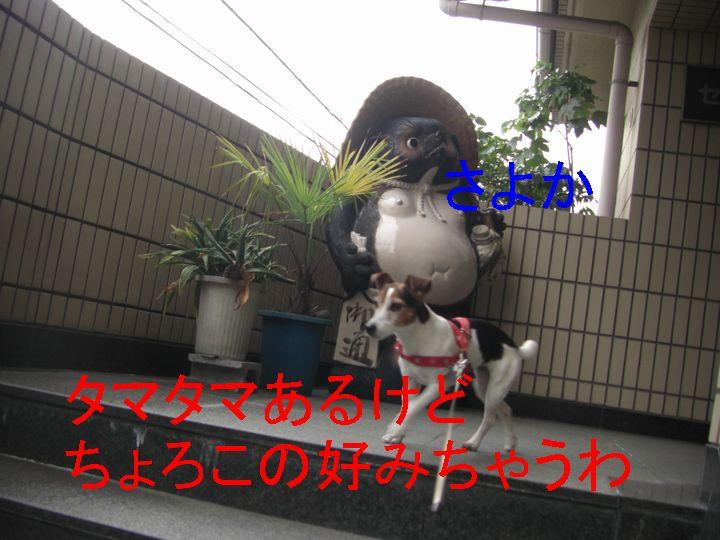 f0053952_15135747.jpg