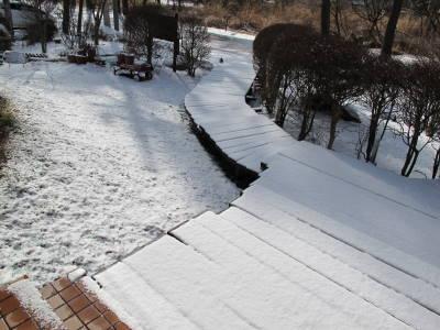 また白い世界_a0129867_1195954.jpg