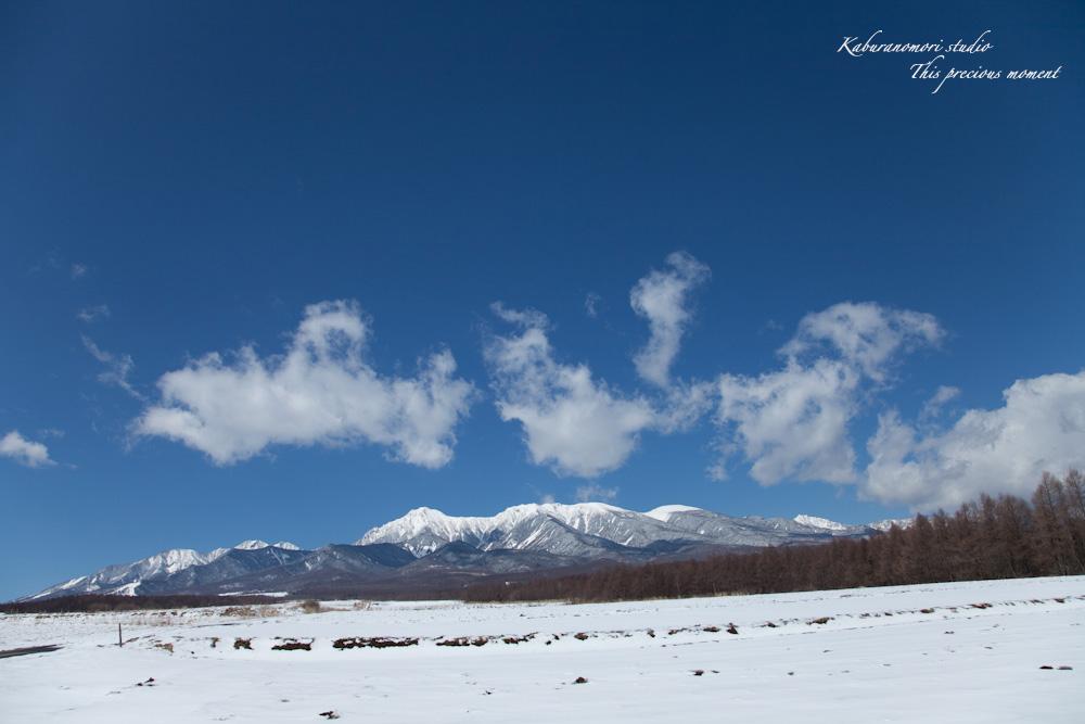 野辺山高原の春は何処_c0137403_18502568.jpg