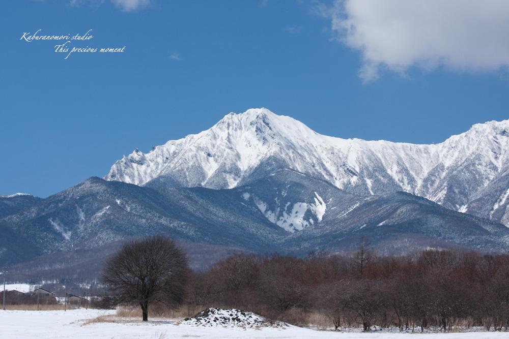 野辺山高原の春は何処_c0137403_18554723.jpg
