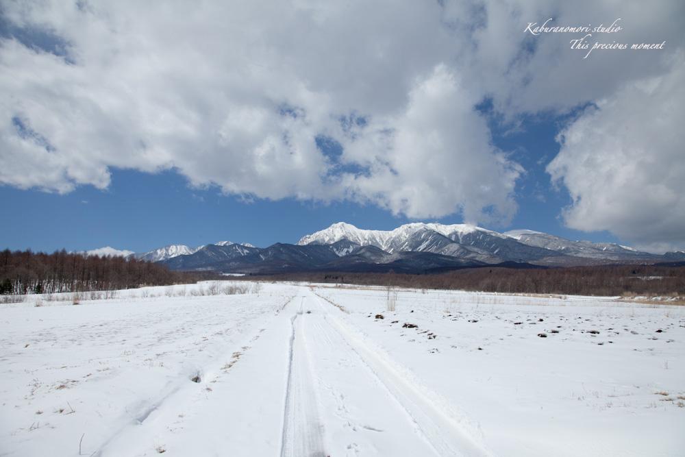 野辺山高原の春は何処_c0137403_18591662.jpg