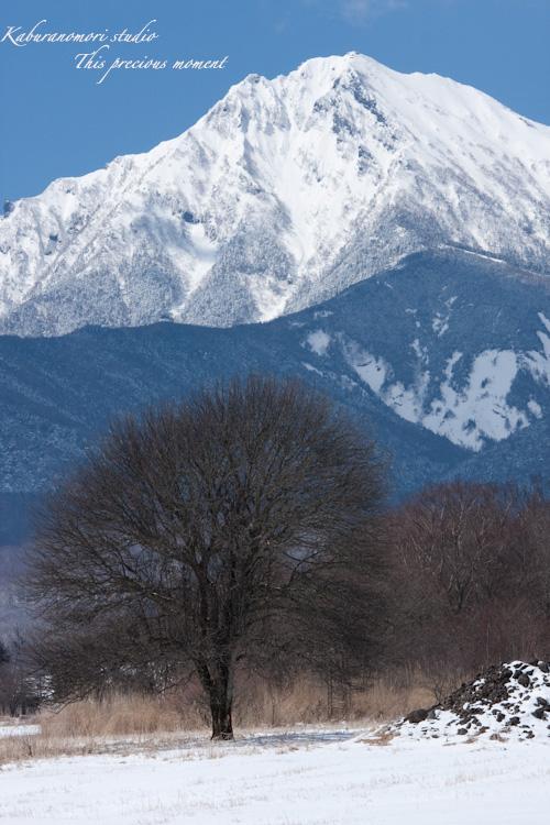 野辺山高原の春は何処_c0137403_19151197.jpg