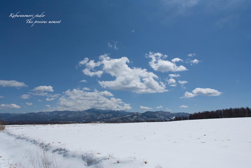 野辺山高原の春は何処_c0137403_19161386.jpg