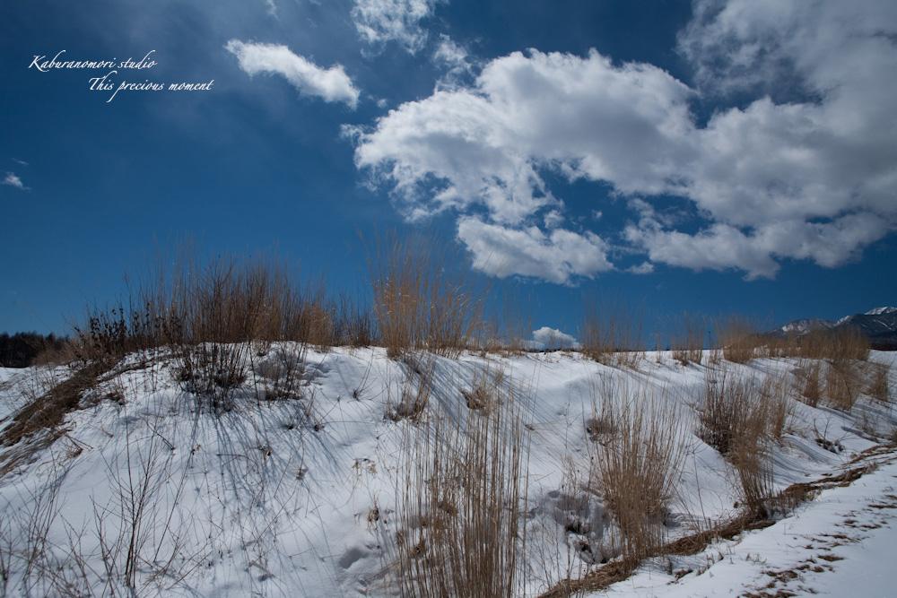 野辺山高原の春は何処_c0137403_19333655.jpg