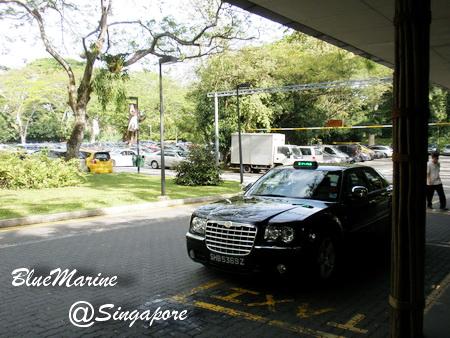 Singapore 現地レポvol.8【画像あり】_f0127319_8514376.jpg