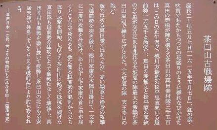 f0000521_433171.jpg