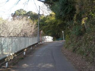 散歩が楽しい家の周り_b0040332_194738.jpg