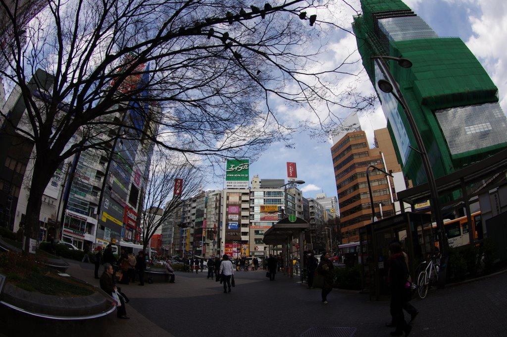 b0197569_2014363.jpg