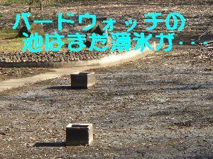 b0101991_2026156.jpg