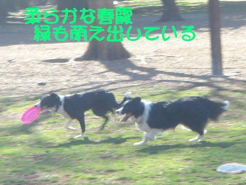 b0101991_20495913.jpg