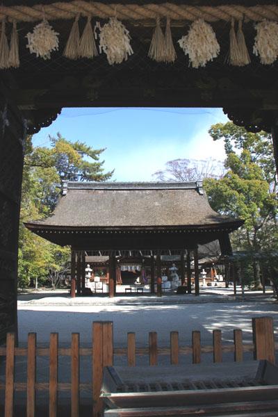 京の花だより 豊国神社と方広寺_e0048413_2071743.jpg