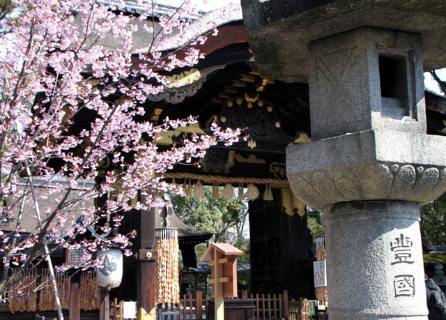 京の花だより 豊国神社と方広寺_e0048413_2072868.jpg