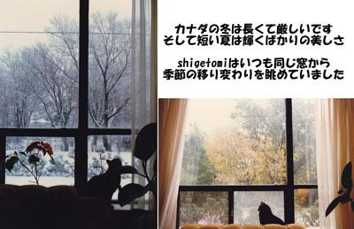 e0195115_91040.jpg