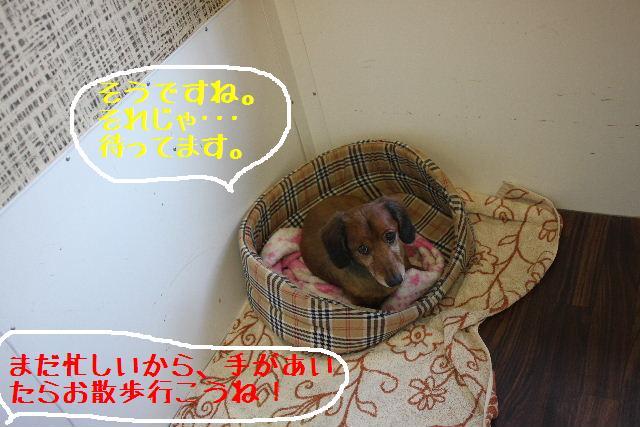 いい天気♪_b0130018_1442269.jpg