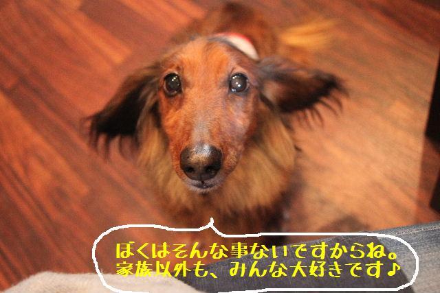 いい天気♪_b0130018_9514723.jpg
