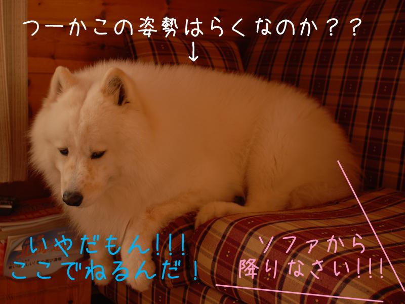 b0146024_1752585.jpg