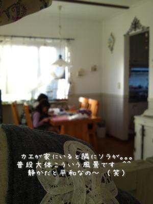 f0023333_17374678.jpg