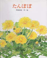 たんぽぽ_c0085543_0303383.jpg