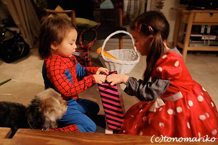 スパイダーマンとウサギ料理_c0024345_055213.jpg