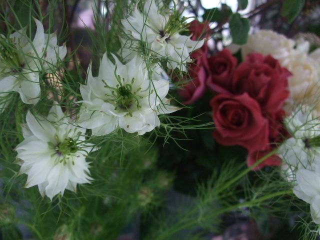 オークリーフ(桜の開花宣言)_f0049672_17544261.jpg