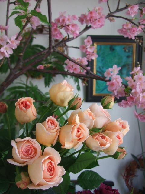 オークリーフ(桜の開花宣言)_f0049672_1755468.jpg