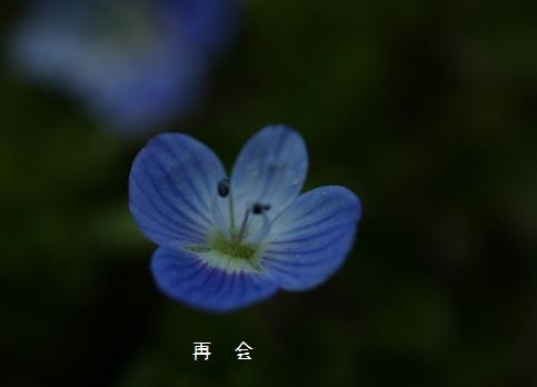 b0211674_22515564.jpg