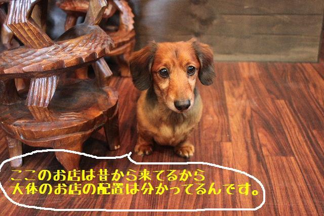 お知らせ!!_b0130018_10144127.jpg