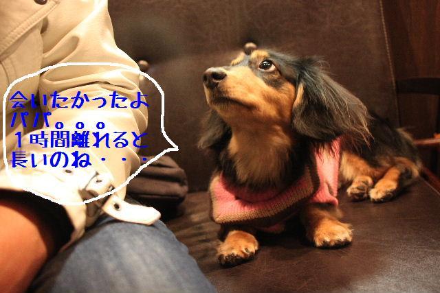 お知らせ!!_b0130018_10272724.jpg