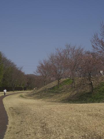 1〇8タワー公園_c0077531_14364232.jpg