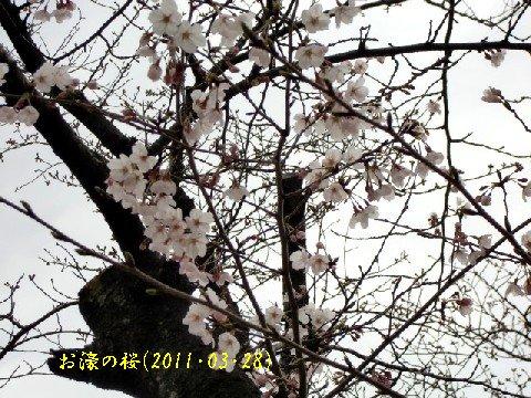 b0012636_8475310.jpg